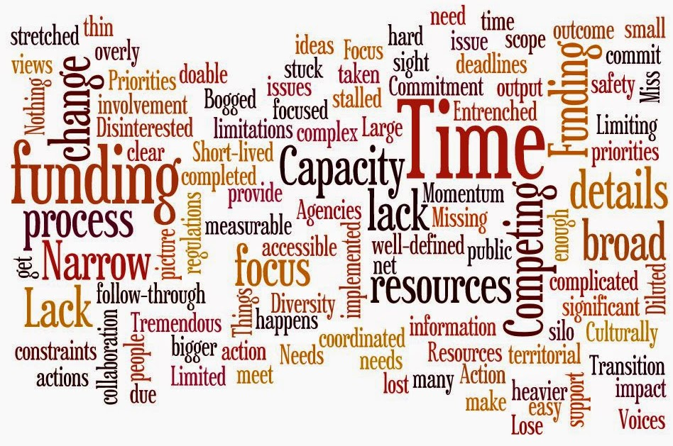 This word cloud is a complication of all the apprehensions and fears expressed by participants in all 4 workgroups during the first workgroup meeting.